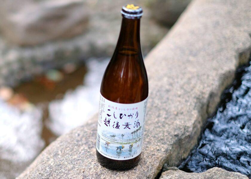 Koshihikari beer taglio